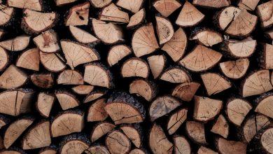Photo of Wat kost een kuub stookhout?