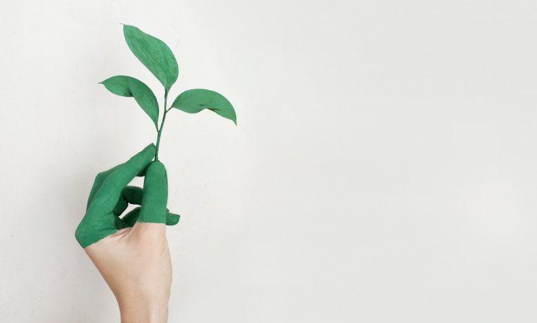 Photo of Tips voor een duurzamer leven